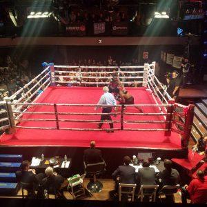 Boxing Ring Dressing 20x20