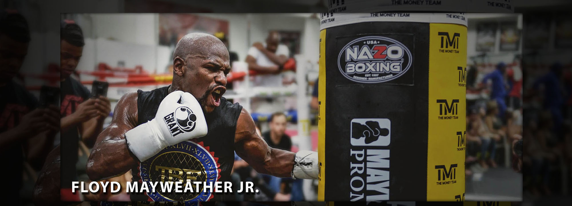 tmt heavy bag Mayweather punching bag